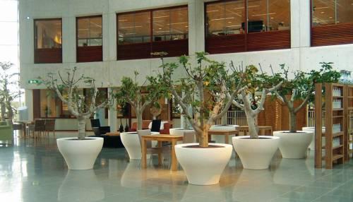 Vasi ming per un tocco di design anche alla tua for Vasi grandi per interni
