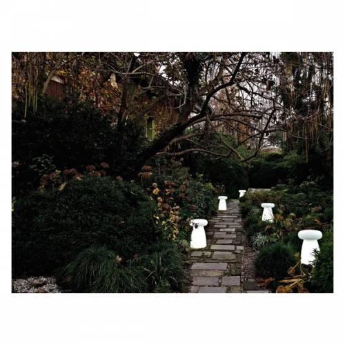 Vasi luminosi non solo mobili for Trasforma un semplice terreno in un colorato giardino